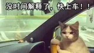 春节不关门 贵阳、贵州、始源公交车景区直达运行时间来了